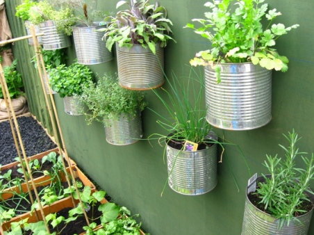 Plantera i gamla plåtburkar